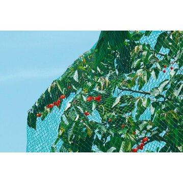 Vogelschutznetz 10 m x 2 m