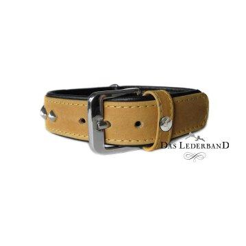 Das Lederband Hundehalsband Amsterdam, Lime / Lava, Breite 30 mm / Länge 50 cm