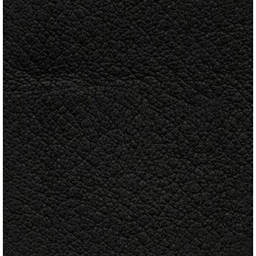 Wolters Führleine Terravita flach Farbe Schwarz Länge. 200cm x 1,5 cm