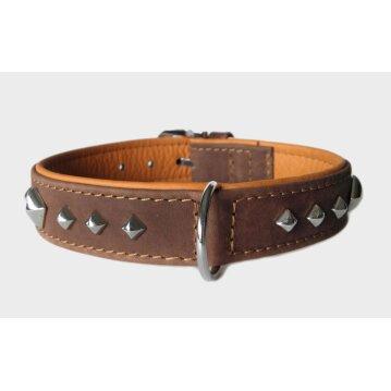 Das Lederband Hundehalsband Roma mocca/cognac,...