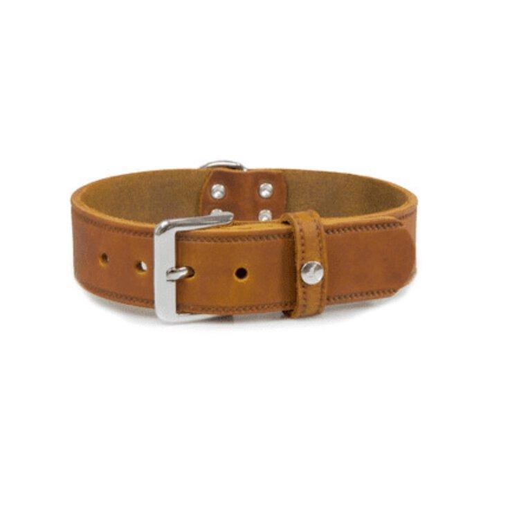 Das Lederband Hundehalsband Weinheim kastanie 47 cm x 18 mm