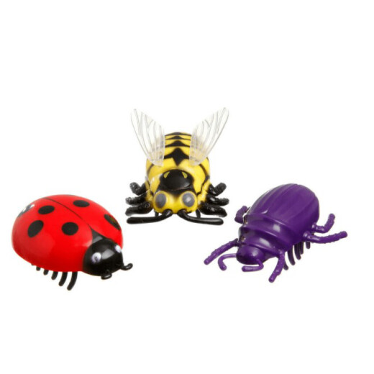 Katzenspielzeug Käfer