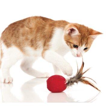 Hunter - Spielzeug für Katzenball Smart Feather und Katzenminze 5cm