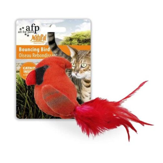 All for Paws Natural Instincts Bouncing Bird