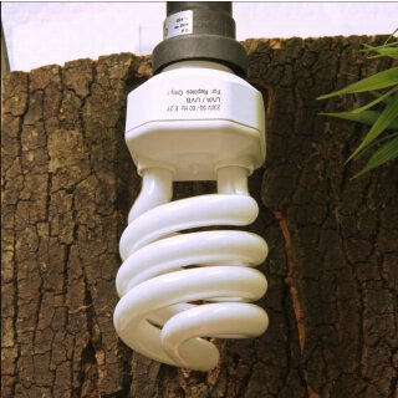 JBL ReptilJungle UV Light 23 Watt